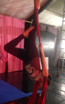 Aerial Arts Vertical Silks