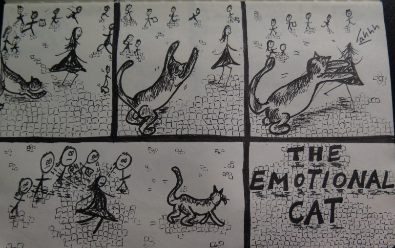 The Emotional Cat